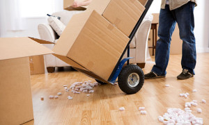 Moving Advice and Tips