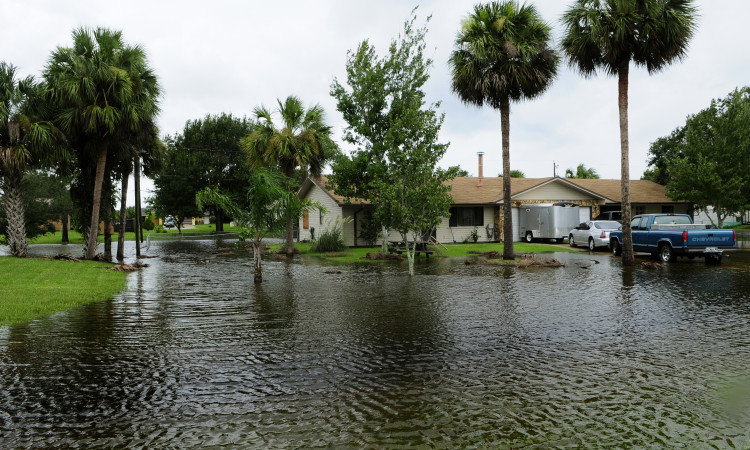 flood zone research for florida