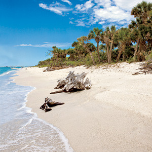 floridas best vacations spots